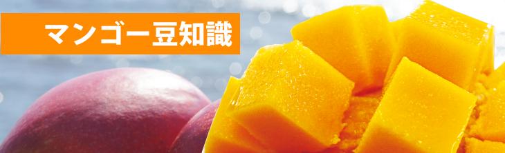 マンゴー豆知識