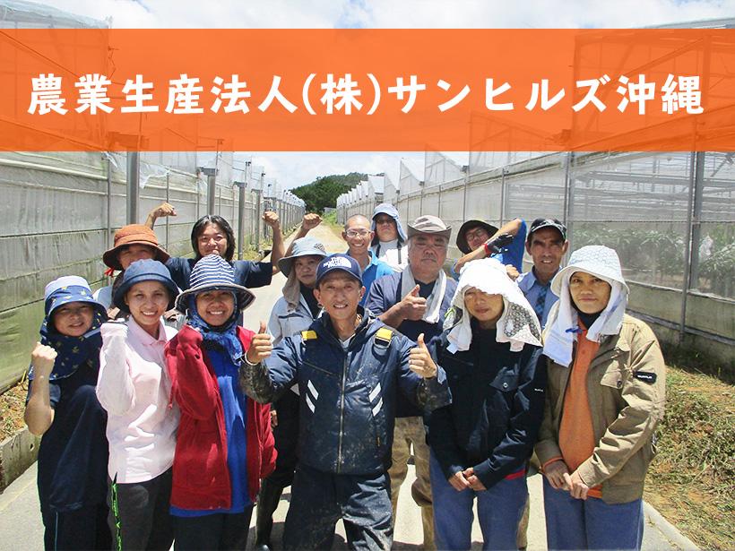 農業生産法人サンヒルズ沖縄